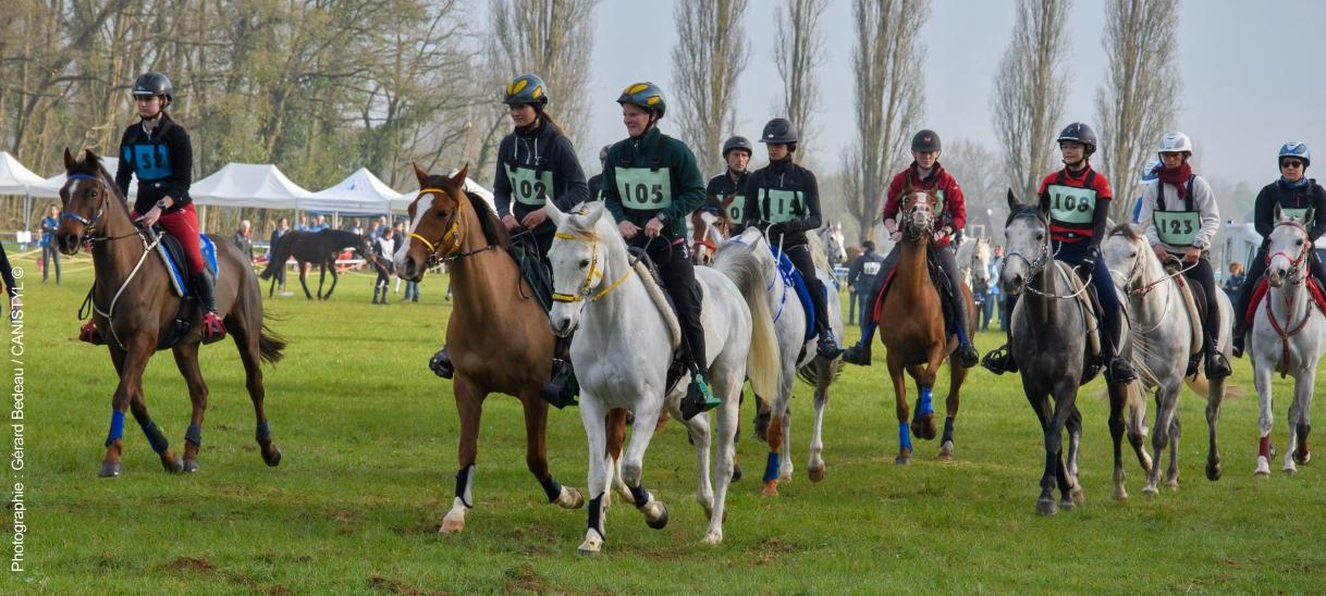 Conseils, initiation et perfectionnement àl'équitation