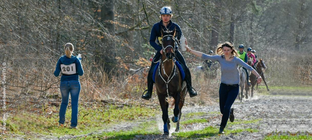 Votre cheval, notre savoir-faire, vosperformances
